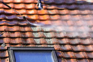 Roof Cleaning Chester